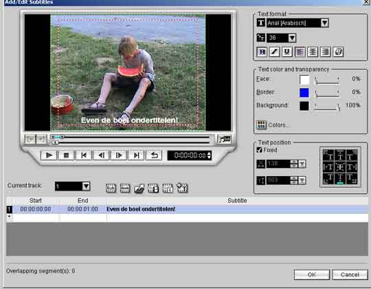 Realtime ondertitels invoegen. DVD Workshop is van alle markten thuis.