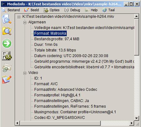 werken-met-codecs-afb7-mediainfo-algemeen-formaat