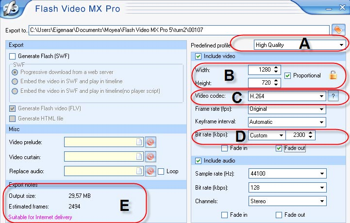 workshop-flash-video-mx-pro-afbeelding-7