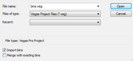 sony-vegas-pro-edit-import-bins