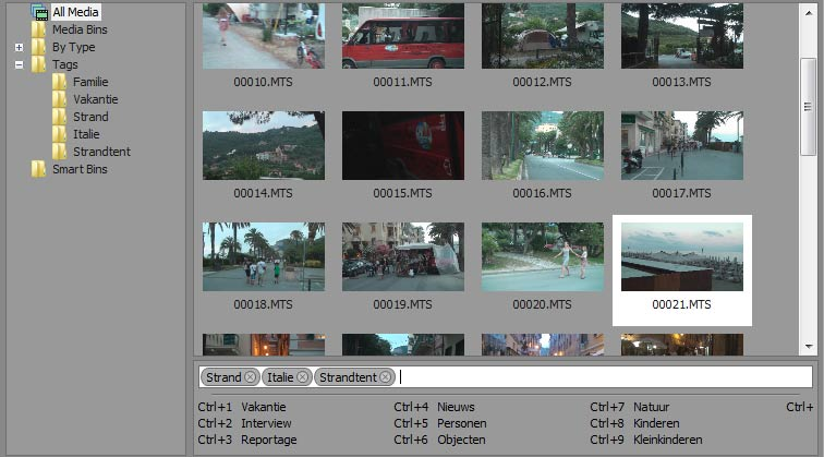 sony-vegas-pro-edit-tags