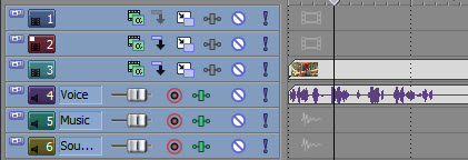 tip16-sony-vegas-movie-studio-track-vehogen