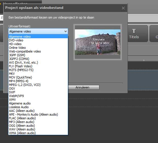 movavi-video-editor-9-export-formaten
